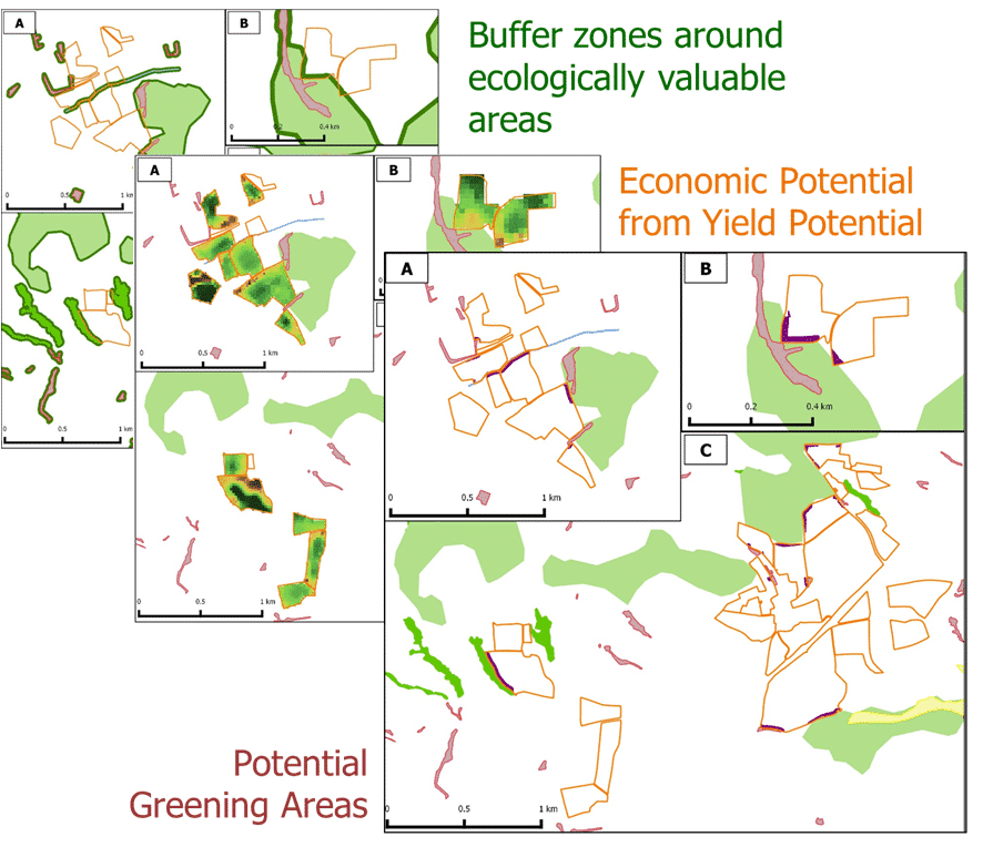 Ökologische Vorrangflächen